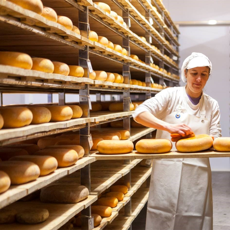 Son Mercer Cheese Experience