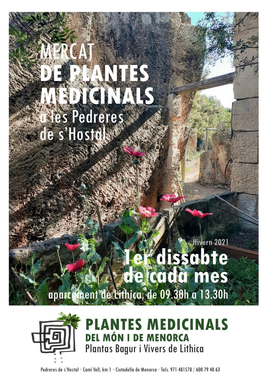MERCAT DE PLANTES MEDICINALS DEL MÓN I DE MENORCA - LITHICA