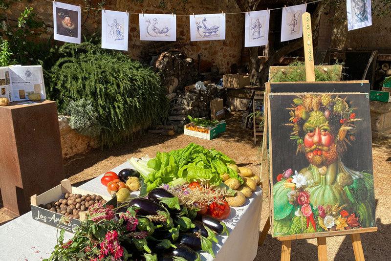 Experiencias del campo de Menorca